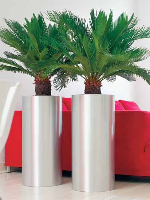 KOSI Pedestal Planter made of stainless steel
