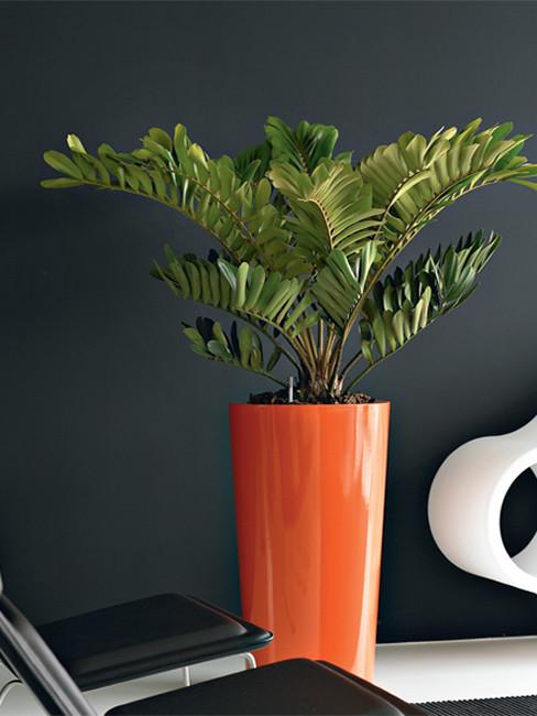 konische Pflanzensäule aus Kunststoff LEVAN