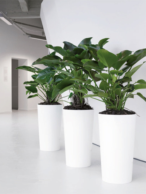 conical Pedestal Planters made of Polystyrene LEVAN
