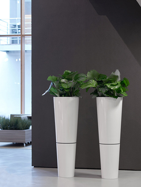 conical Pedestal Planter with shadow gap made of Polystyrene with FAVORO