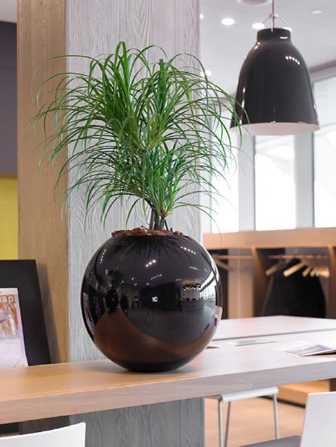 kugelförmiges Pflanzgefäß aus Kunststoff  VANO
