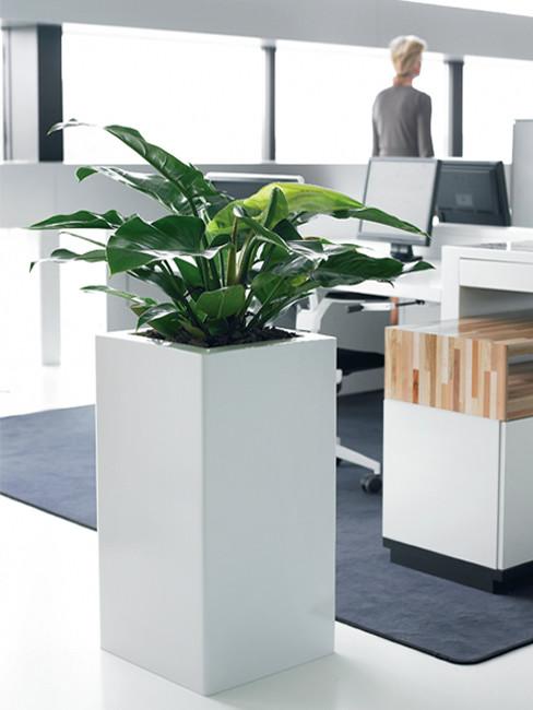 ZONDA: quadratische Pflanzensäule aus Kunststoff mit breitem Rand