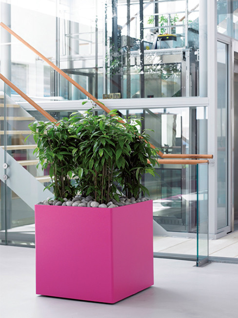 ZONDA: quadratisches Pflanzgefäß  aus Kunststoff